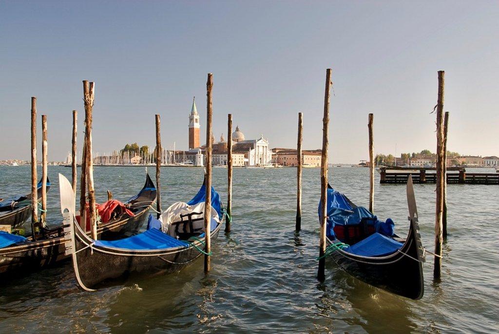 Venedig-Kult