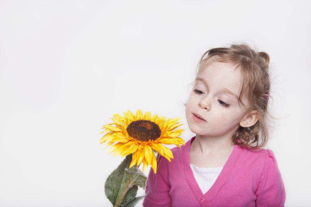 Sonnenblumenperlen