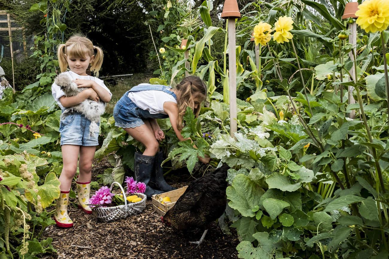 Zwei kleine Mädchen ernten Gemüse und pflücken Blumen in einem Urban Gardening Projekt.