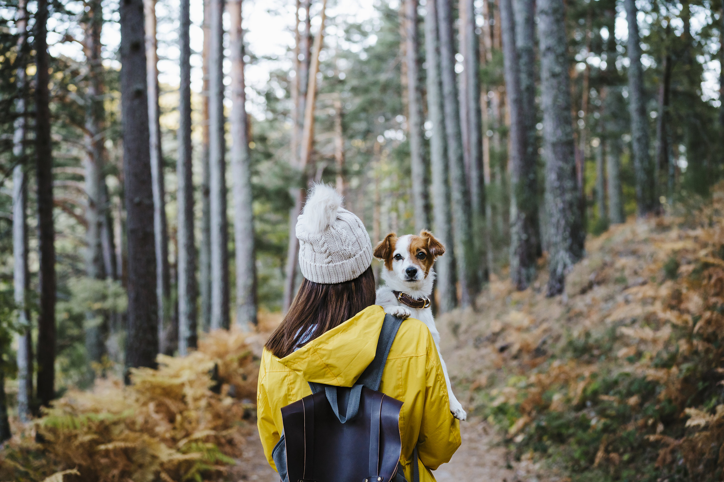 Woman holding dog in her arms in the forest.